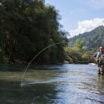 Fliegenfischen in der No-Kill Strecke der Passer